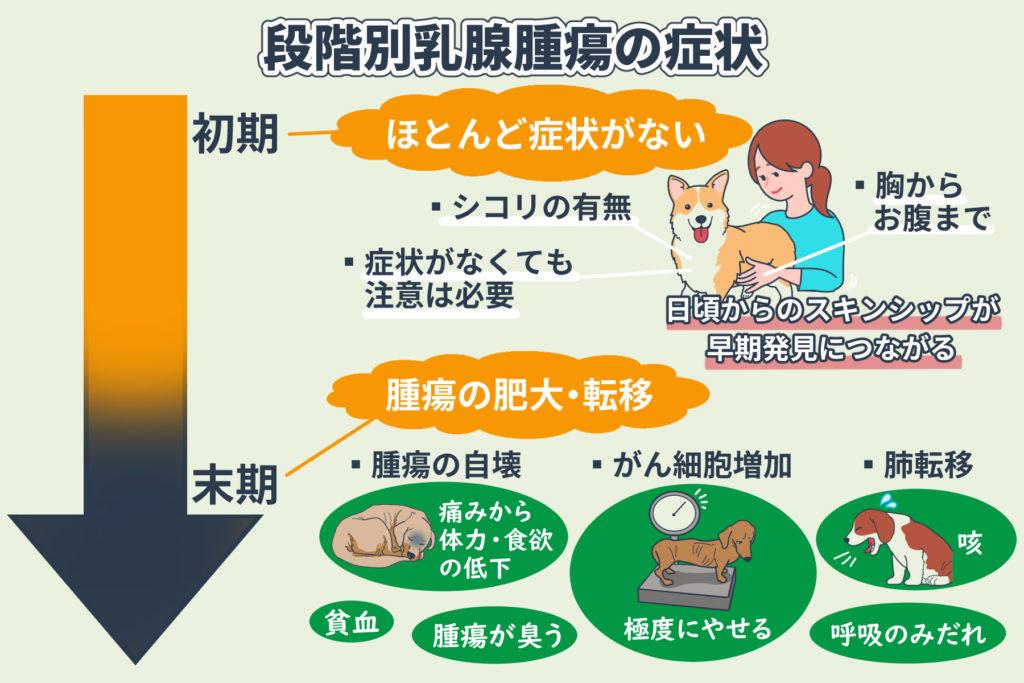 段階別乳腺腫瘍の症状
