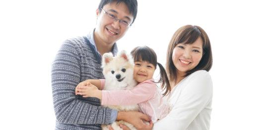 病気を患った犬や猫の飼い主様からの改善報告