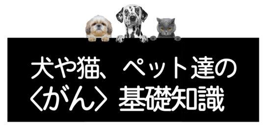犬猫のがん基礎知識