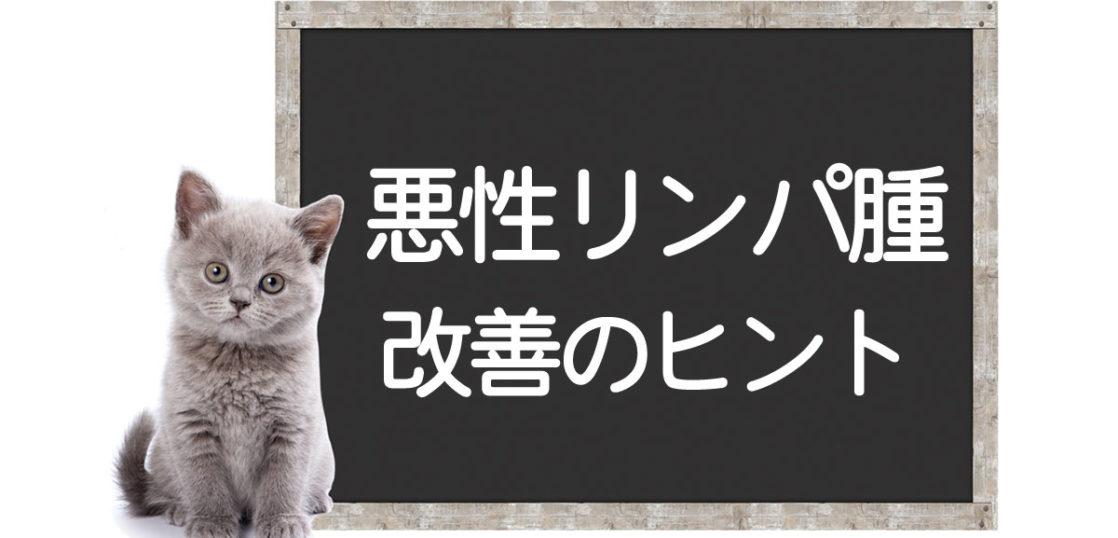 猫の悪性リンパ腫の克服方法