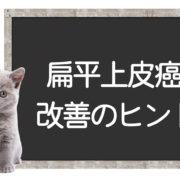 猫の扁平上皮癌の克服方法