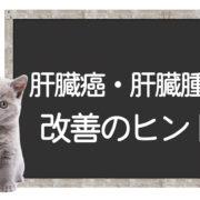 猫の肝臓癌の克服方法