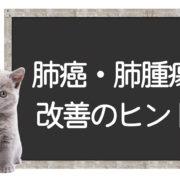 猫の肺癌の克服方法