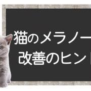 猫のメラノーマ克服方法