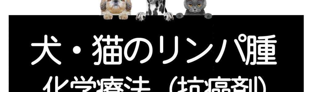 犬猫のリンパ腫の抗癌剤