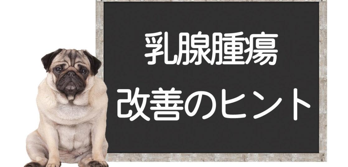 犬の乳腺腫瘍の改善方法
