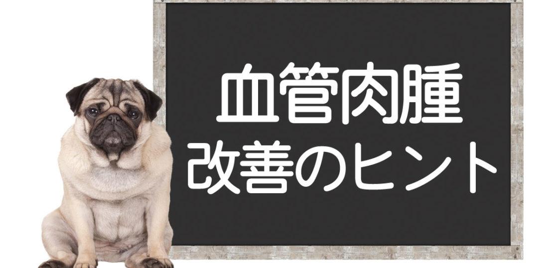 犬の血管肉腫の改善方法