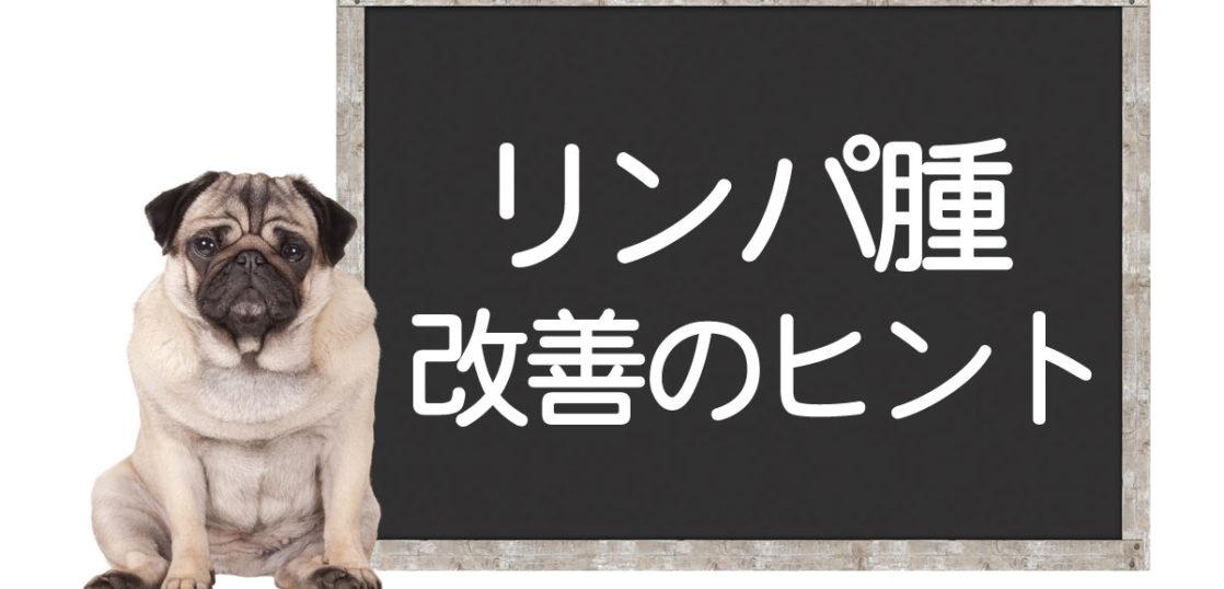 犬のリンパ腫改善のヒント