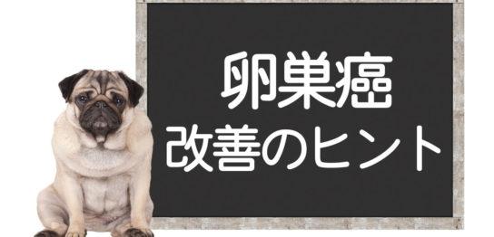 犬の卵巣癌改善方法