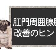 犬の肛門周囲腺腫の改善方法