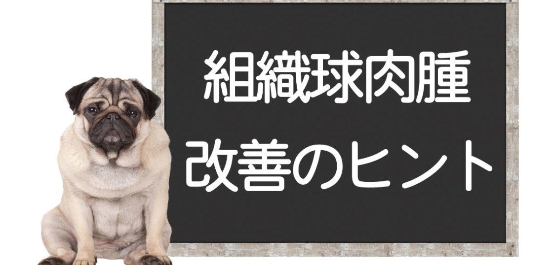 犬の組織球肉腫の改善方法