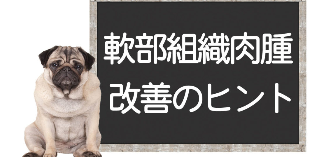 犬の軟部組織肉腫の改善方法