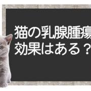 猫の乳腺腫瘍