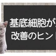 猫の基底細胞癌の克服方法