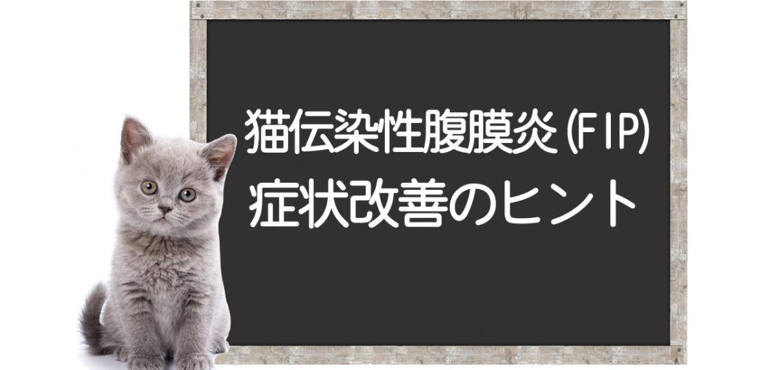 猫のFIP克服方法
