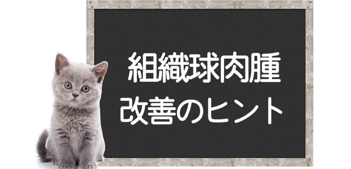 猫の組織球肉腫の克服方法