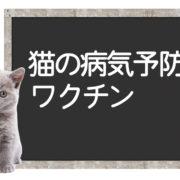 猫のワクチンで予防できる病気