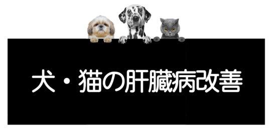 犬猫の肝臓病克服方法