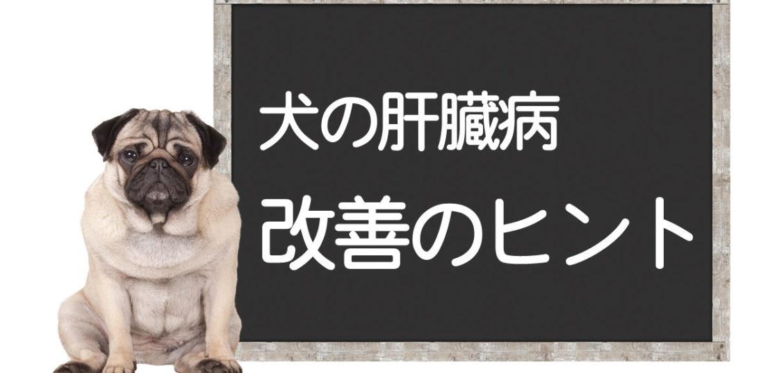 犬の肝臓病克服方法