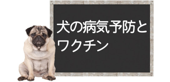 ワクチンで予防できる犬の病気