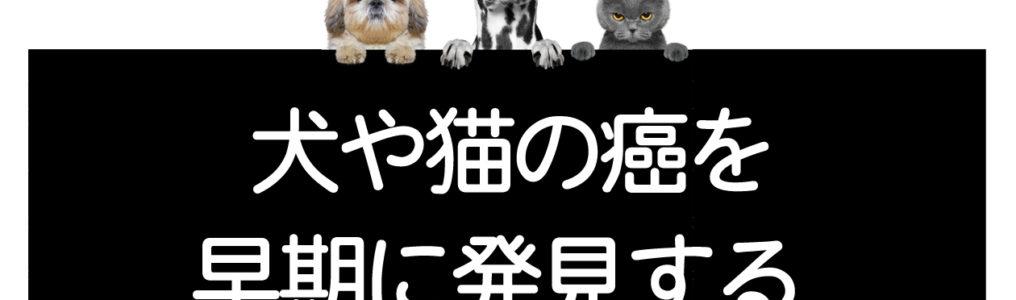 犬猫の癌の早期発見