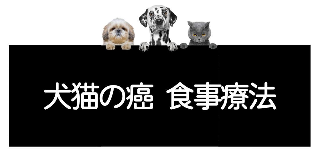 犬や猫の癌の食事療法
