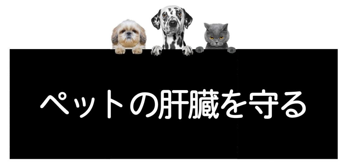 犬猫の肝臓を守る方法