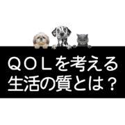 犬猫の生活の質QOL