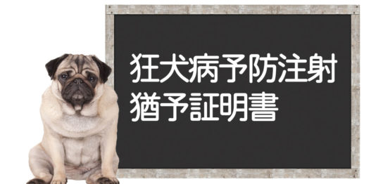 狂犬病予防注射の猶予について