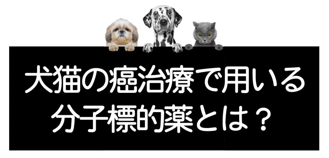 犬猫の分子標的薬
