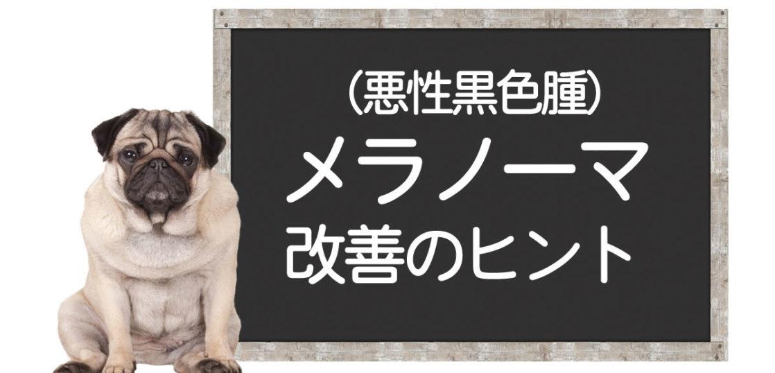 犬のメラノーマ