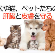 犬・猫・ペットのプラセンタ