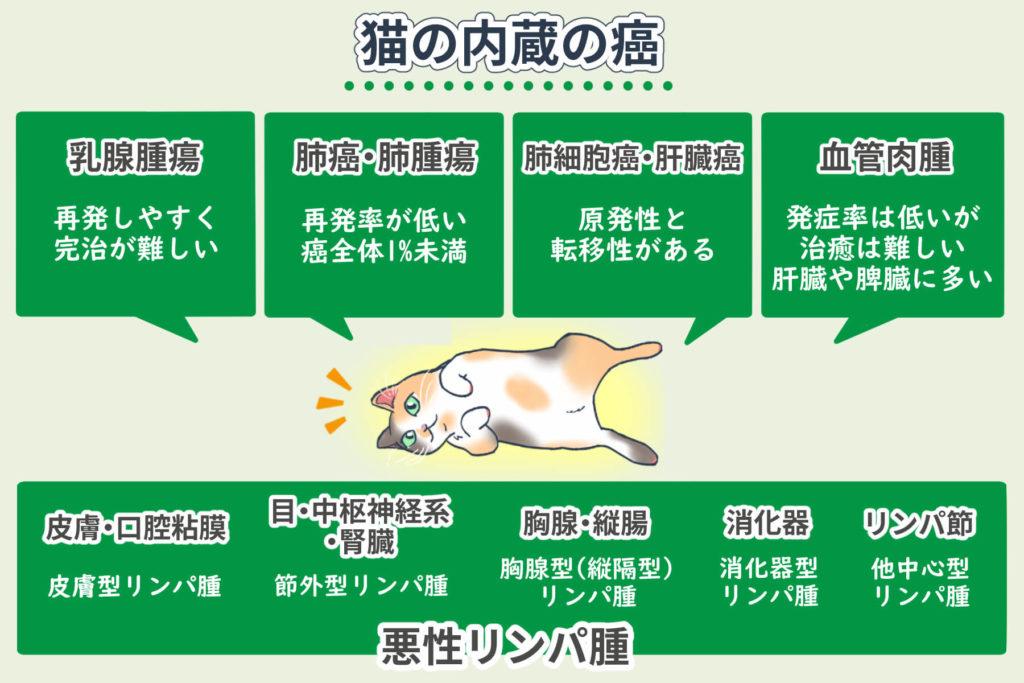 猫の内臓の癌