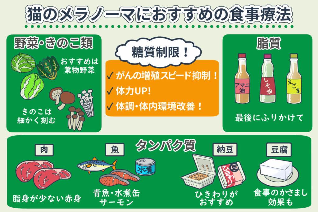 猫のメラノーマにおすすめの食事療法