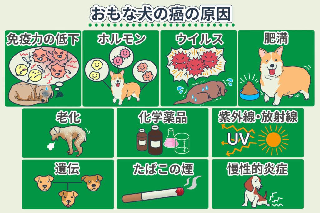 おもな犬の癌の原因