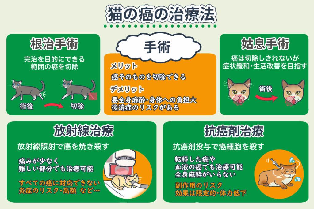 猫の癌の治療法