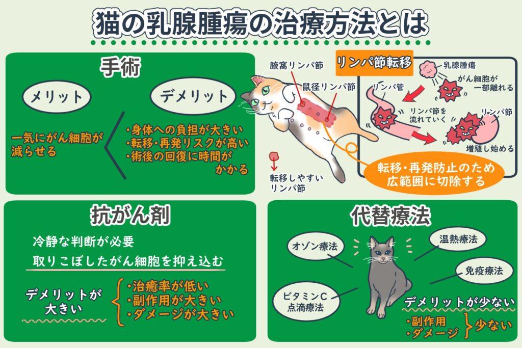 猫の乳腺腫瘍の治療法