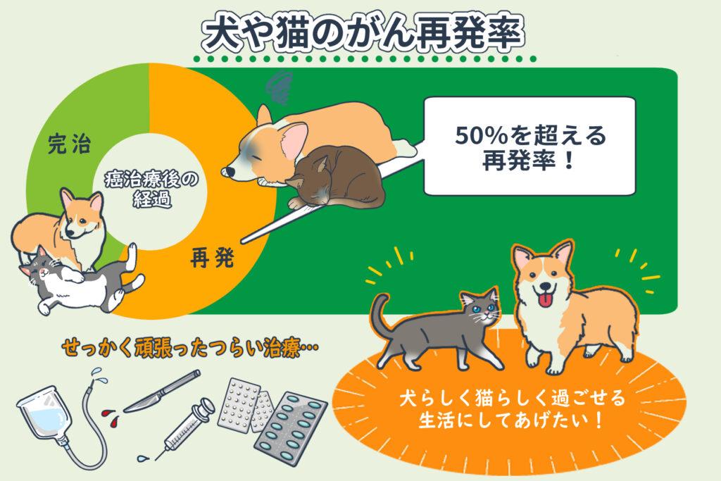 犬や猫の癌再発率