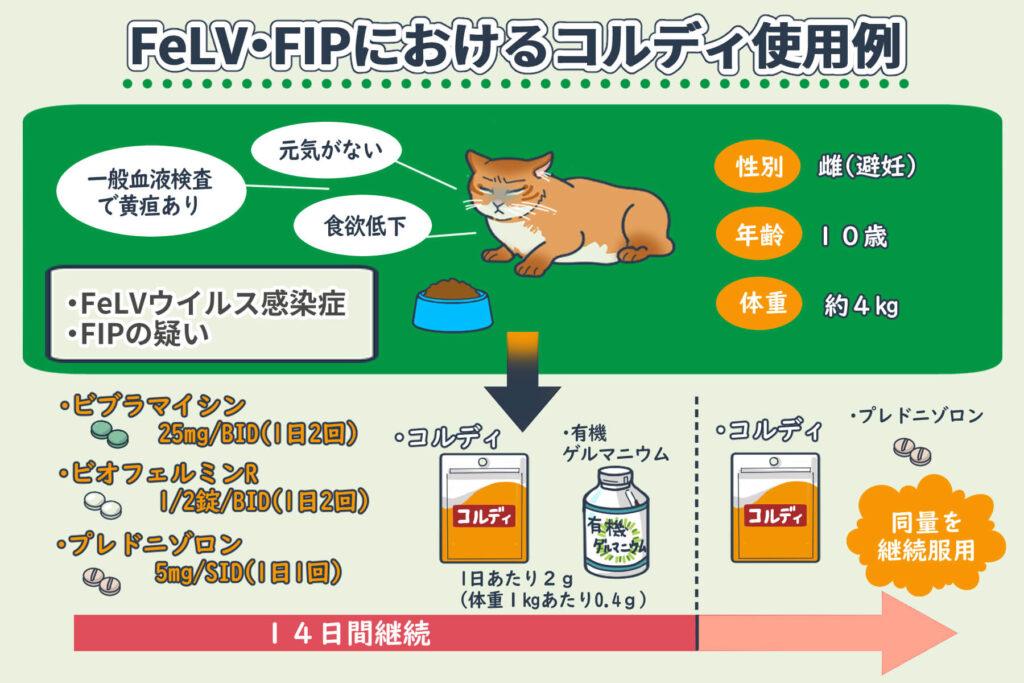 FeLV・FIPにおけるコルディ使用例